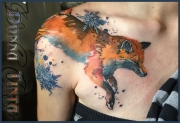 shoulder_fox