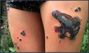 watercolor_aquarell_animals_tattoo_DT_0045