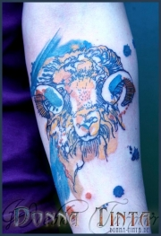 watercolor_aquarell_animals_tattoo_DT_0046