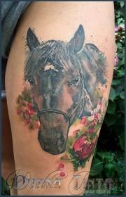 watercolor_aquarell_animals_tattoo_DT_0050