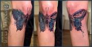 watercolor_aquarell_animals_tattoo_DT_0058